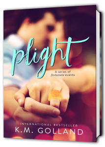 Plight-3D-book